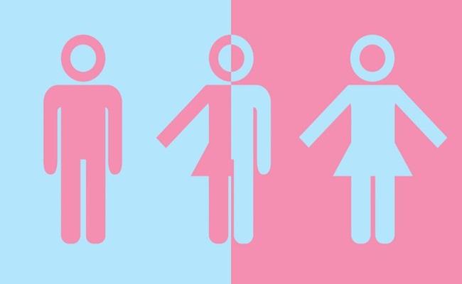 Ilustrasi qsaltlake.com  - [Jerman] Identitas Kelamin Intersex Sekarang Sah Menurut Hukum
